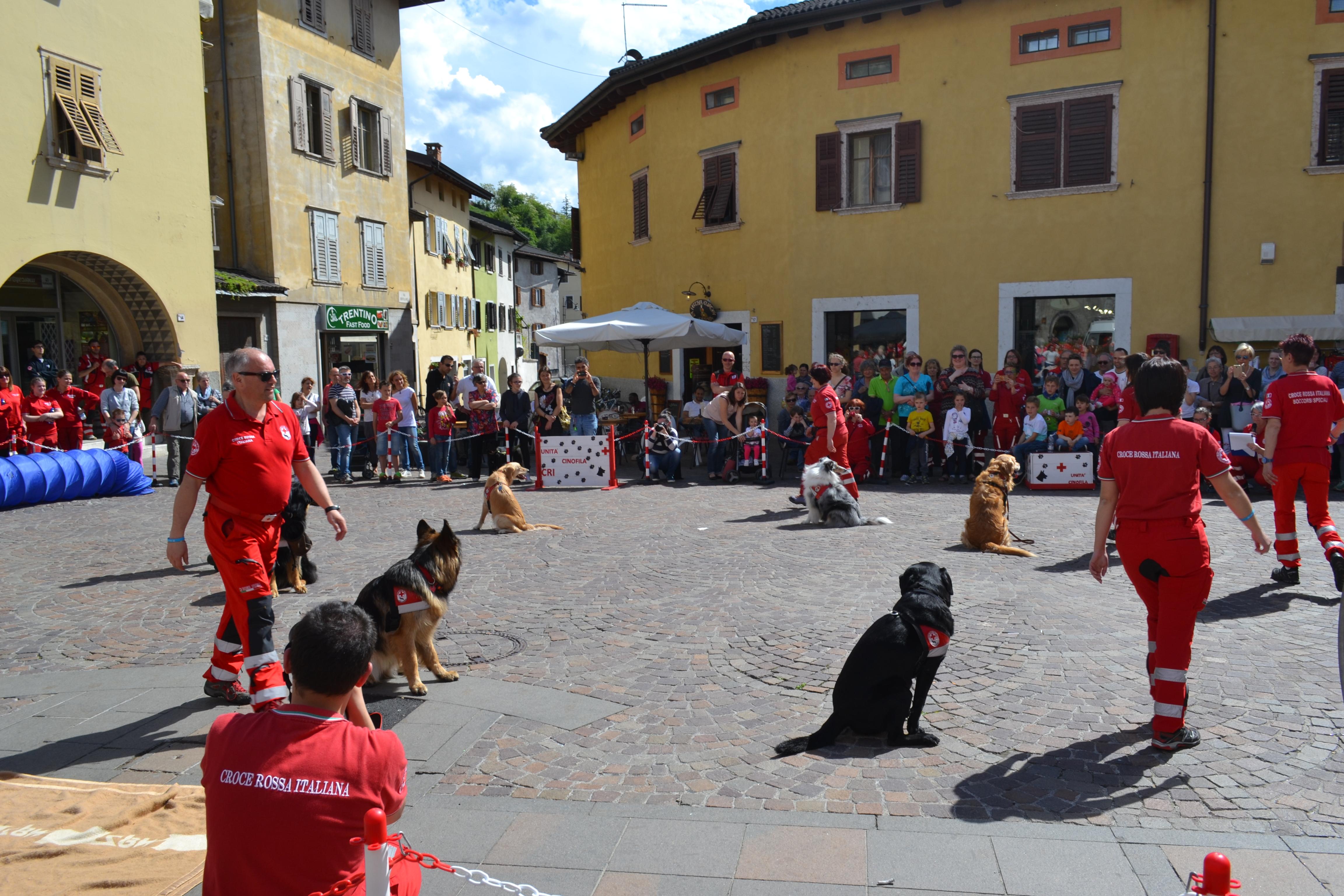 Auguri Di Buon Compleanno A Tutti Noi Croce Rossa Italiana